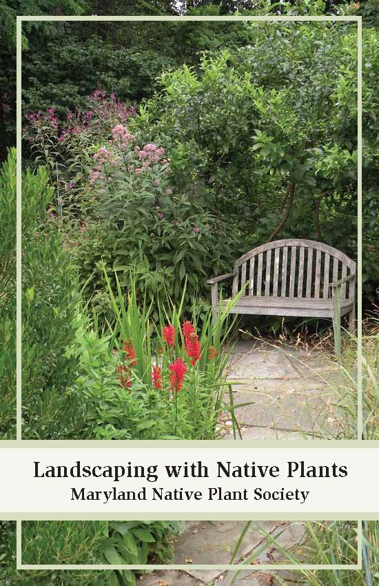 Maryland native plant society landscaping with native plants for Landscaping with native plants